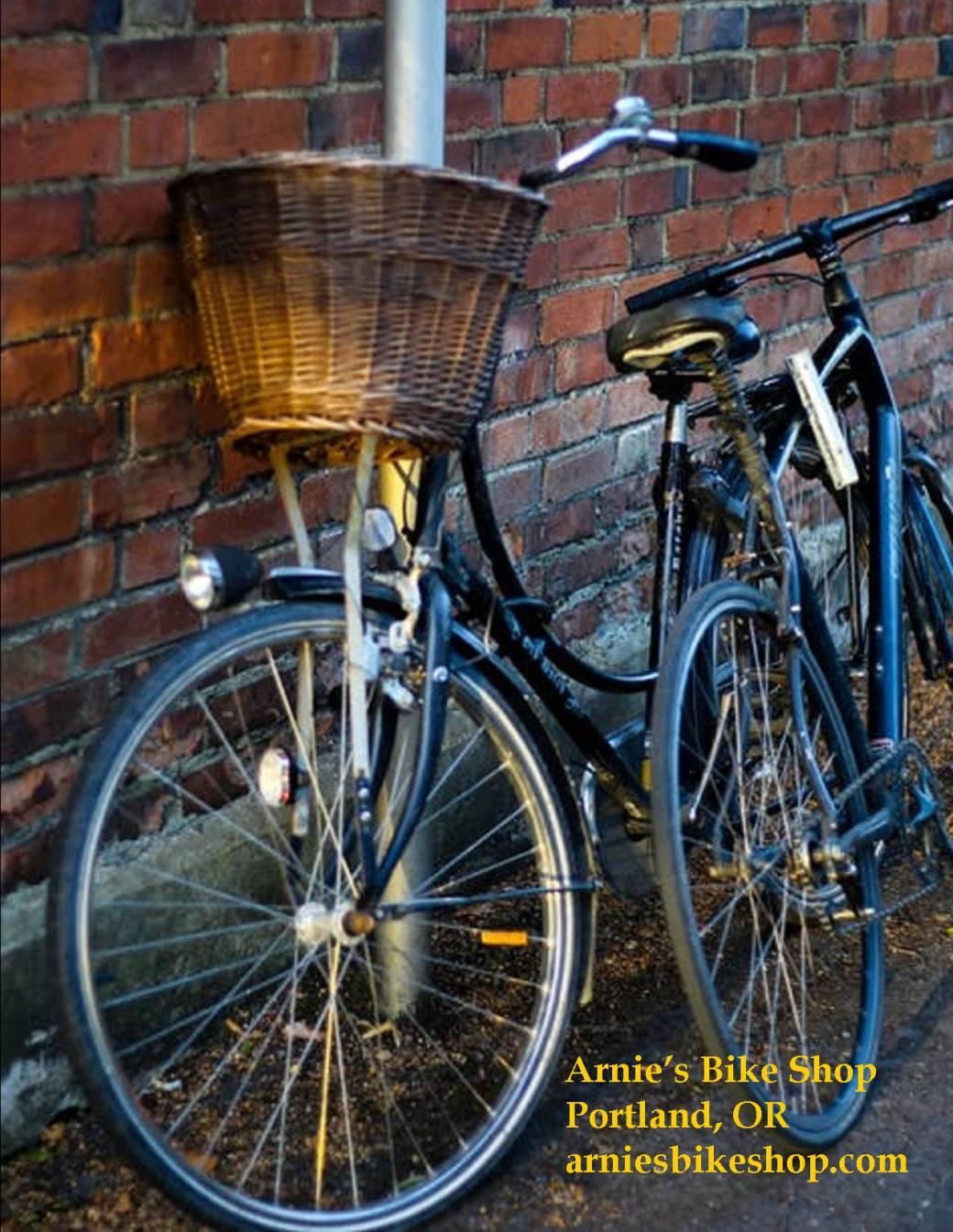 sample arnies bike